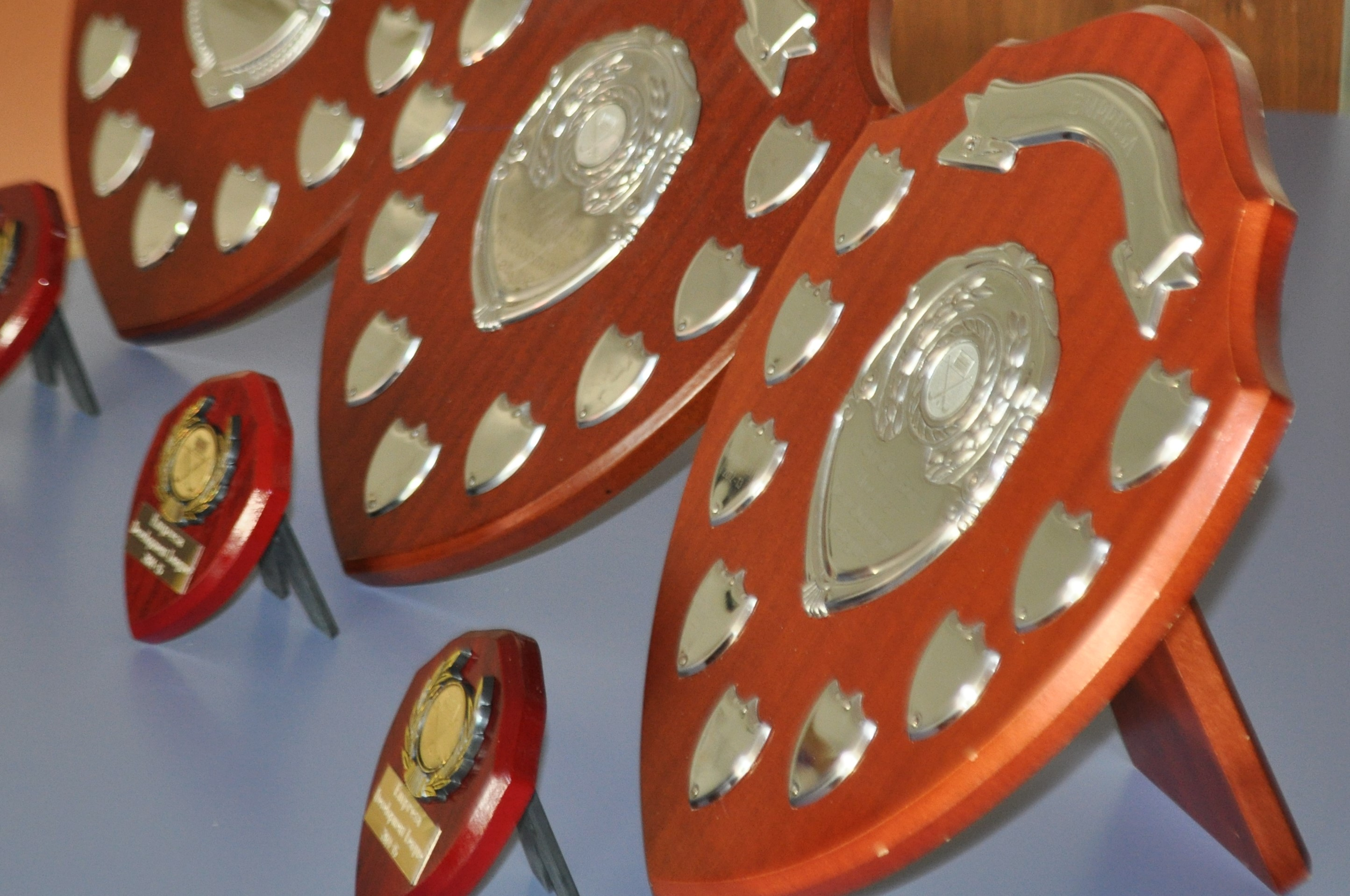 Image for article: Winners trophies to be awarded at the Empresa Women's Norfolk Hockey AGM