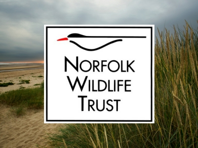 Image for project: Norfolk Wildlife Trust