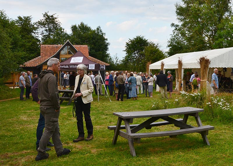 Image for article: Norfolk Wildlife Trust Summer Event